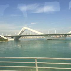 Sheikh Zayed Bridge User Photo