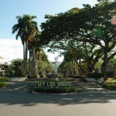 더 필리핀 마닐라 대학 여행 사진