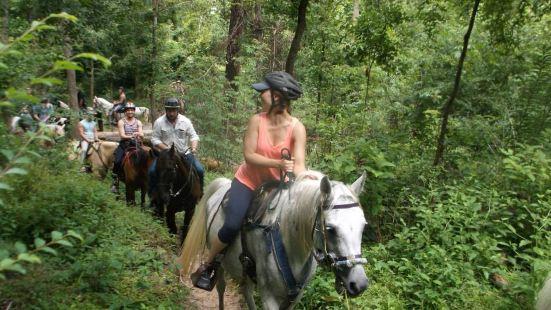 Cypress Trails騎馬遊覽