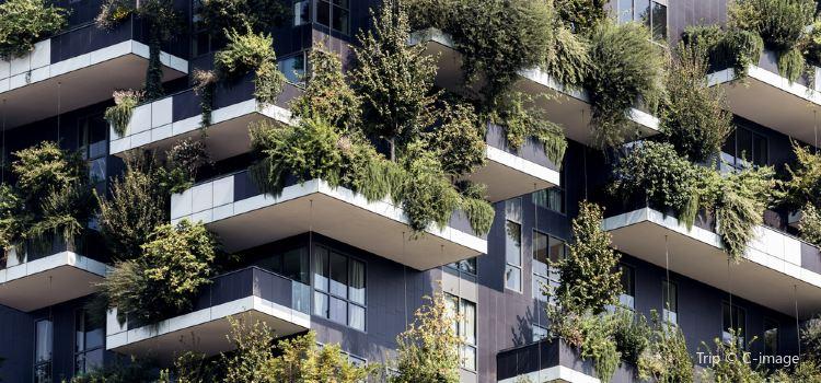 垂直森林2