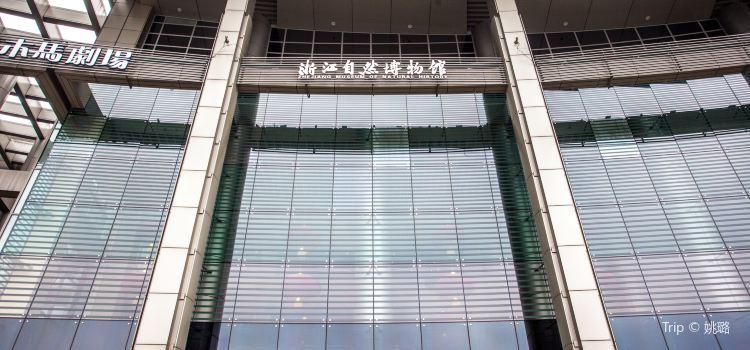 浙江自然博物館1