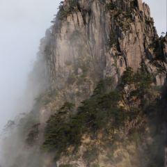 황산 관광지(황산 풍경지) 여행 사진