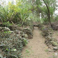 Gaoshan Mountain User Photo