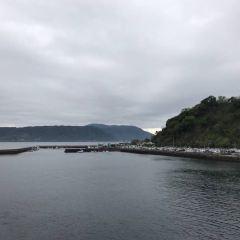 櫻島火山 用戶圖片