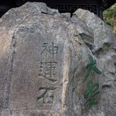 龍井八景用戶圖片