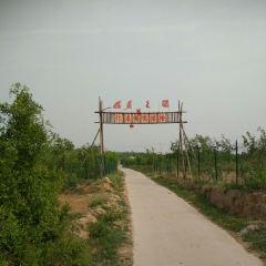 Zhaowangling User Photo