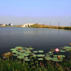 夢湖景區用戶圖片