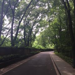 Hudong Park User Photo