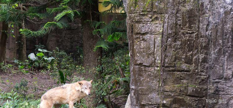 타이베이시립동물원