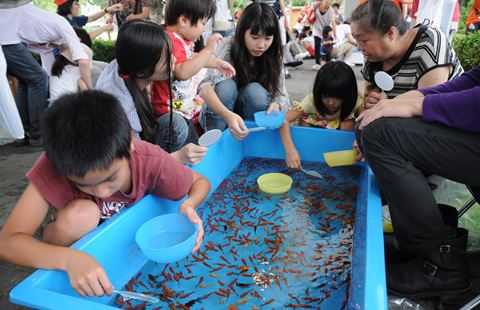 江戶川區特產金魚祭