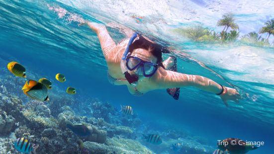 스뤄커우해변 다이빙 체험