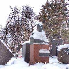 Novodevichy Cemetery User Photo