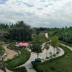 吉木薩爾地質公園用戶圖片