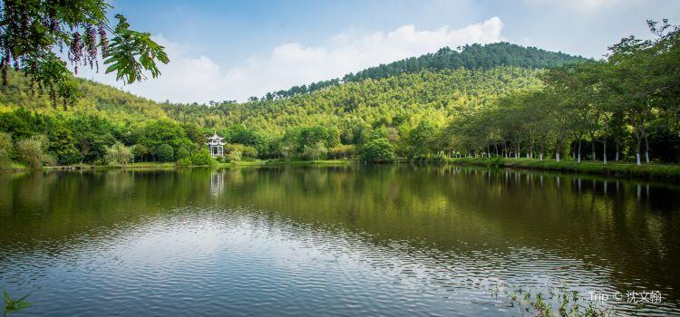 유쯔산 삼림공원1