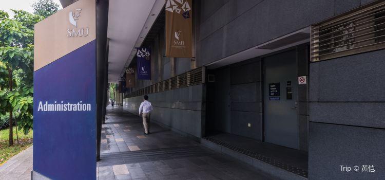 싱가포르 매니지먼트 대학