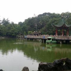 Revolution Park User Photo