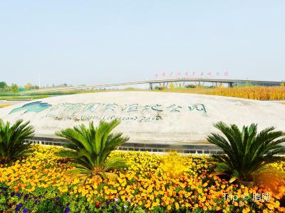 西安滻灞國家濕地公園