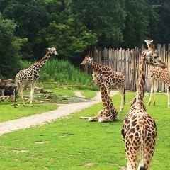 Leipzig Zoo (Zoologischer Garten Leipzig)用戶圖片