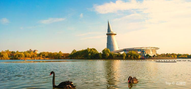 中國綠化博覽園