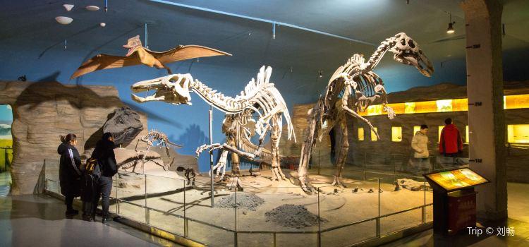 헤이룽장성(흑룡강성) 박물관2