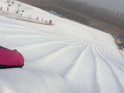 Shengtai Celebrity Garden Ice and Snow Carnival