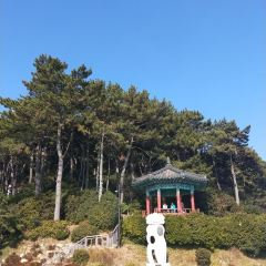 Dongbaekseom Island User Photo