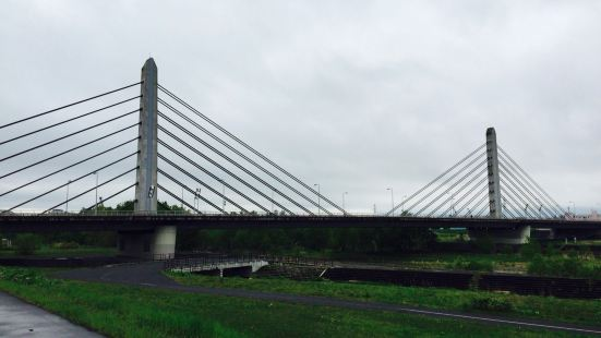 Twin Harp Bridge