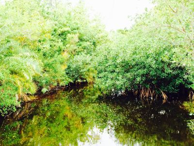 Gardens of Crandon Park