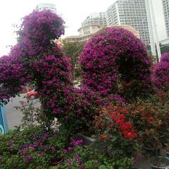 Yuechuanqiao Square User Photo