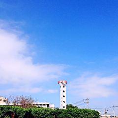 밍신 과기대학 여행 사진