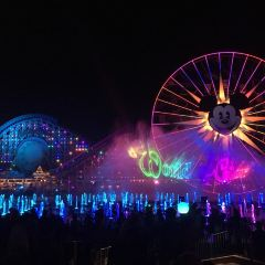 迪士尼加州冒險樂園用戶圖片