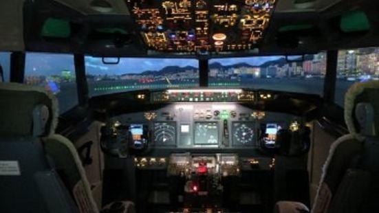 Flight Experience Singapore