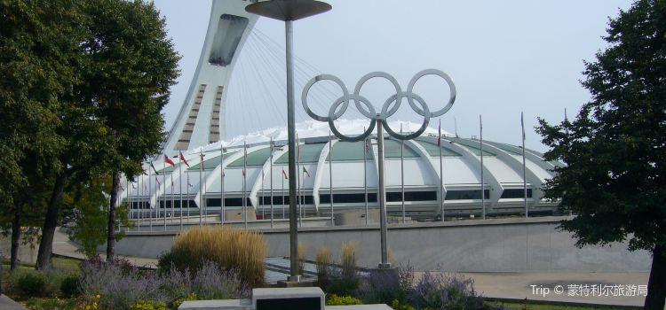 奧林匹克公園1
