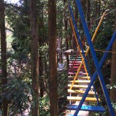 Stone Dragon Valley Forest Amusement Park User Photo