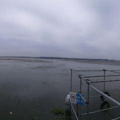 寶應湖國家濕地公園用戶圖片