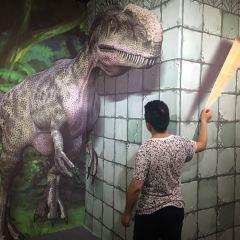 3D錯覺趣味館用戶圖片