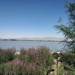 Zhangye National Wetland Park User Photo