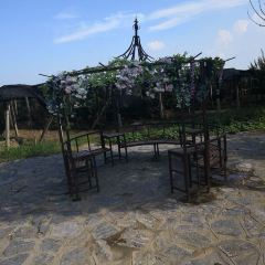 Dapu Rural World User Photo
