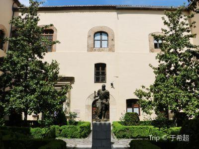 그라나다 대학