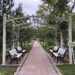 Pingshuiqiao Park User Photo