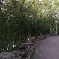 Ecology Park User Photo