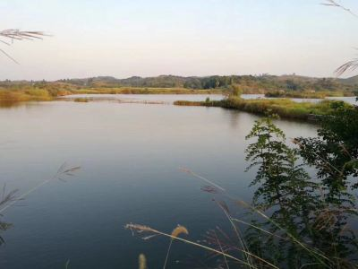 Guiyang  Pounded Ling River Ecological Fishery Co., Ltd.