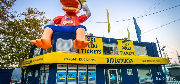 Ride the Ducks of Seattle1