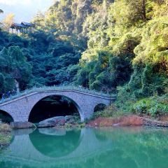 향비삼림공원 여행 사진