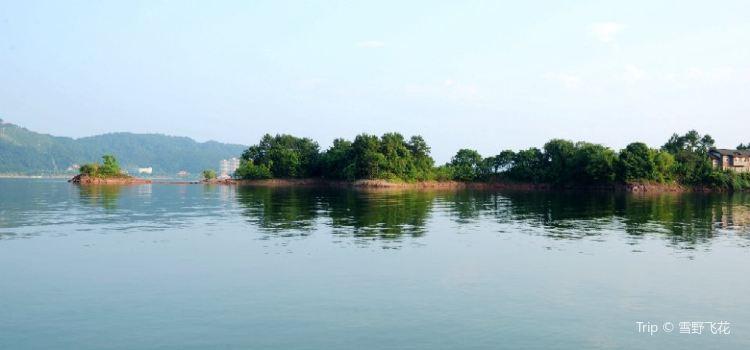千島湖中心湖區3