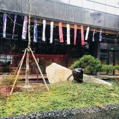 River Purple Resorts & Spa User Photo