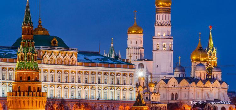 The Moscow Kremlin1