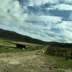 Ullapool Hill用戶圖片