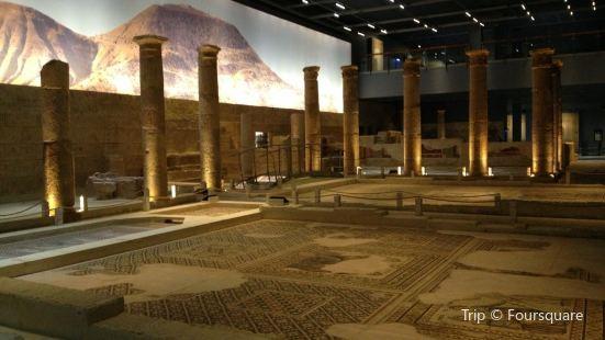 Zeugma Mozaik Muzesi