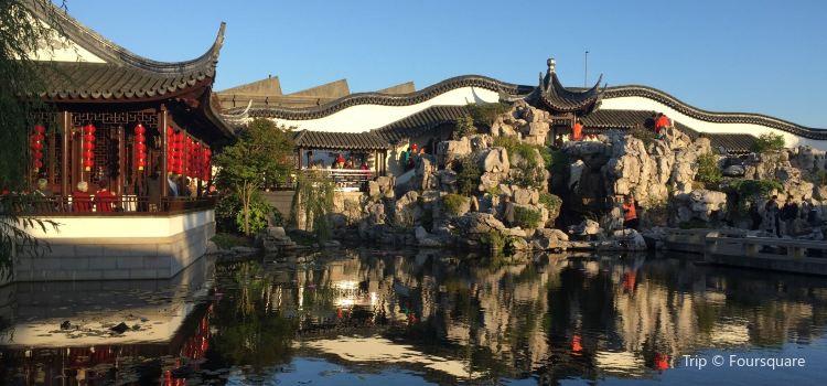 Dunedin Chinese Garden3